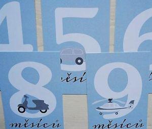 Milníkové kartičky pro chapečka modré 25 ks